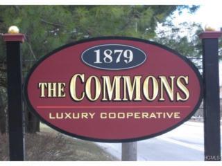 1879  Crompond Road  E11, Peekskill, NY 10566 (MLS #4431135) :: The Lou Cardillo Home Selling Team