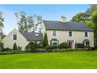 50 E Cedar Drive  , Briarcliff Manor, NY 10510 (MLS #4431501) :: William Raveis Legends Realty Group