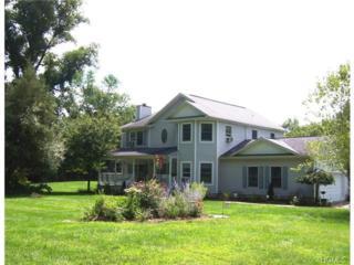 14  Spanktown Road  , Warwick, NY 10990 (MLS #4431604) :: William Raveis Baer & McIntosh