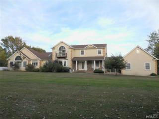 151  Burlingham Road  , Pine Bush, NY 12566 (MLS #4432285) :: The Lou Cardillo Home Selling Team