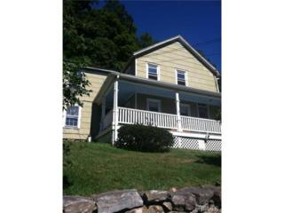 179  Route 202  , Somers, NY 10589 (MLS #4434586) :: The Lou Cardillo Home Selling Team