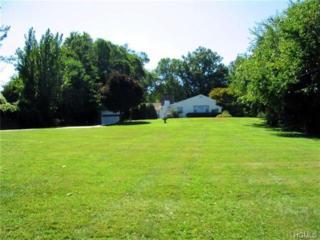 1825  Crompond Road  , Peekskill, NY 10566 (MLS #4435751) :: The Lou Cardillo Home Selling Team