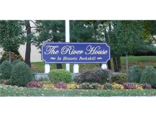 150  Overlook Avenue  5N, Peekskill, NY 10566 (MLS #4439843) :: William Raveis Legends Realty Group