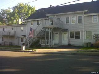 133  Grand Street  3, Goshen, NY 10924 (MLS #4440181) :: William Raveis Baer & McIntosh