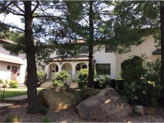 128  Somerset Drive  , Suffern, NY 10901 (MLS #4440497) :: The Lou Cardillo Home Selling Team