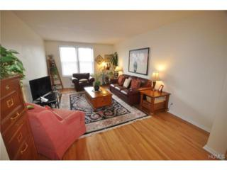 517  Riverdale Avenue  5E, Yonkers, NY 10705 (MLS #4440520) :: William Raveis Legends Realty Group