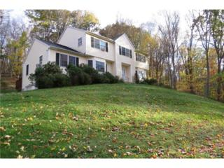 281  Drewville Road  , Carmel, NY 10512 (MLS #4440783) :: The Lou Cardillo Home Selling Team