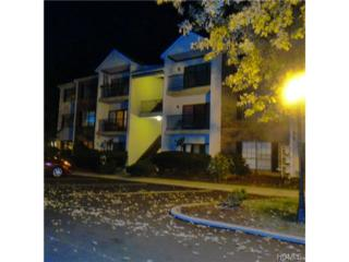 35  Huntington Circle  35, Peekskill, NY 10566 (MLS #4441927) :: The Lou Cardillo Home Selling Team