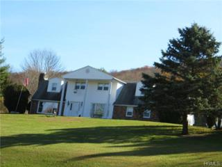 45  Cascade Road  , Warwick, NY 10990 (MLS #4442696) :: William Raveis Baer & McIntosh