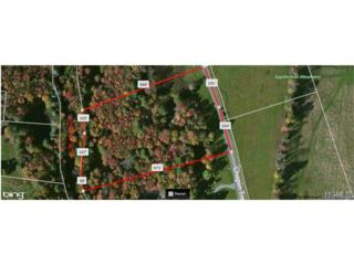 Chapin Trail  , Bethel, NY 12720 (MLS #4444035) :: The Lou Cardillo Home Selling Team
