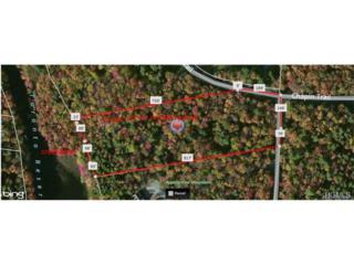 Chapin Trail  , Bethel, NY 12720 (MLS #4444036) :: The Lou Cardillo Home Selling Team