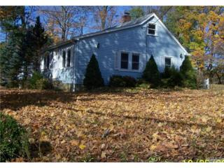 1546  Hanover Street  , Yorktown Heights, NY 10598 (MLS #4444277) :: William Raveis Legends Realty Group