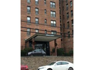 277  Bronx River Road  5H, Yonkers, NY 10704 (MLS #4446360) :: The Lou Cardillo Home Selling Team