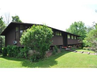 64  Mountainside Road  , Warwick, NY 10990 (MLS #4501850) :: William Raveis Baer & McIntosh