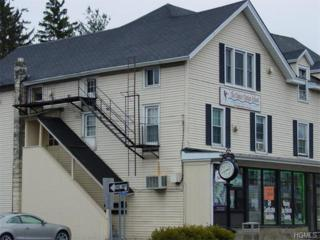 291  Main Street  2, Cornwall, NY 12518 (MLS #4503091) :: William Raveis Baer & McIntosh