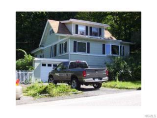 35  Mineral Springs Road  , Highland Mills, NY 10930 (MLS #4503227) :: William Raveis Baer & McIntosh