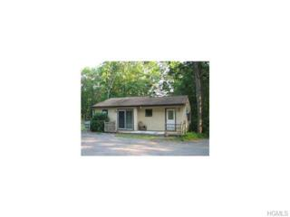 33  Burgess Drive  , Monroe, NY 10950 (MLS #4503259) :: William Raveis Baer & McIntosh