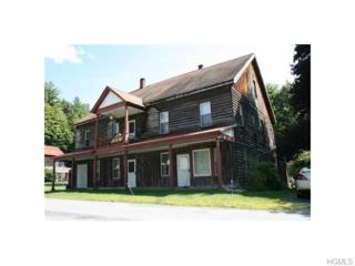 12  Beechwoods Road  , Callicoon, NY 12723 (MLS #4503362) :: The Lou Cardillo Home Selling Team