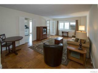 480  Halstead Avenue  2B, Harrison, NY 10528 (MLS #4503380) :: William Raveis Legends Realty Group