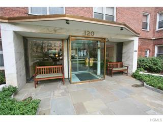 120 E Hartsdale Avenue  2H, Hartsdale, NY 10530 (MLS #4503458) :: William Raveis Legends Realty Group
