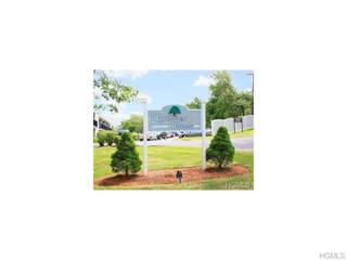 1  Wyndover Woods Lane  17, White Plains, NY 10603 (MLS #4503747) :: William Raveis Legends Realty Group