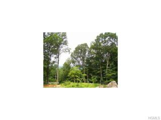 72 S Hill Road  , Cortlandt Manor, NY 10567 (MLS #4503934) :: William Raveis Legends Realty Group