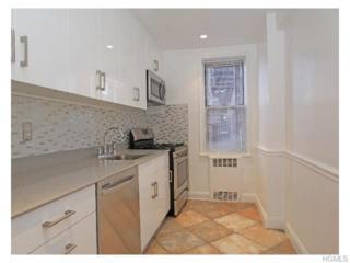 5639  Netherland Avenue  3E, Bronx, NY 10471 (MLS #4504103) :: Mark Seiden Real Estate Team