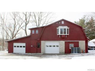 65  Prospect Terrace  C, Montgomery, NY 12549 (MLS #4504125) :: William Raveis Baer & McIntosh