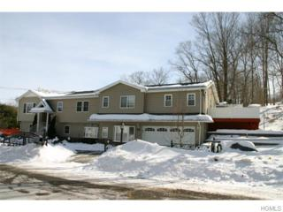111  Orange Turnpike  , Sloatsburg, NY 10974 (MLS #4505857) :: Realty Teams