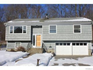 744  Shenandoah Avenue  , Peekskill, NY 10566 (MLS #4506624) :: The Lou Cardillo Home Selling Team