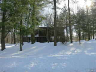 15  Beaver Dam Road  , Pomona, NY 10970 (MLS #4506844) :: Realty Teams