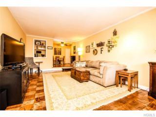50  Barker Street  637, Mount Kisco, NY 10549 (MLS #4508297) :: William Raveis Legends Realty Group