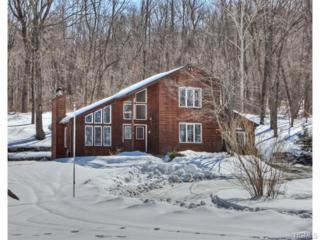 228  Bellvale Lakes Road  , Warwick, NY 10990 (MLS #4509037) :: William Raveis Baer & McIntosh