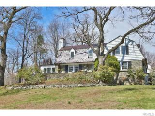 1200  Seymour  , Peekskill, NY 10566 (MLS #4509465) :: The Lou Cardillo Home Selling Team
