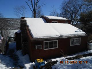 64  Deer Trail  , Greenwood Lake, NY 10925 (MLS #4511295) :: William Raveis Baer & McIntosh