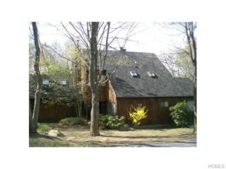 70  Mitchell Road  , Somers, NY 10589 (MLS #4511875) :: The Lou Cardillo Home Selling Team