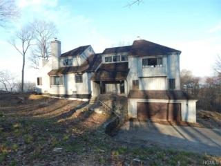 45  Becker Lane  , Briarcliff Manor, NY 10510 (MLS #4515879) :: The Lou Cardillo Home Selling Team