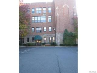 55  Mckinley Avenue  D2-5, White Plains, NY 10606 (MLS #4516524) :: William Raveis Legends Realty Group