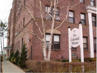 167  Centre Avenue  6F, New Rochelle, NY 10805 (MLS #4516760) :: William Raveis Legends Realty Group