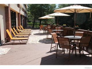 44  Edinburgh Drive  , Peekskill, NY 10566 (MLS #4518264) :: The Lou Cardillo Home Selling Team