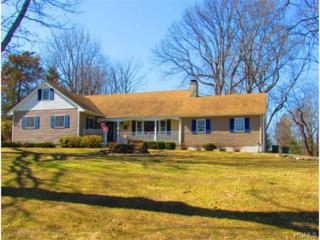 10  Pinebrook Drive  , Poughquag, NY 12570 (MLS #4518534) :: The Lou Cardillo Home Selling Team