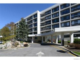 400  High Point Drive  304, Hartsdale, NY 10530 (MLS #4518588) :: The Lou Cardillo Home Selling Team