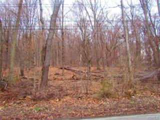 Pine Ridge Drive  , Wappingers Falls, NY 12533 (MLS #4519096) :: The Lou Cardillo Home Selling Team
