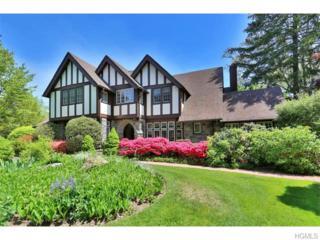 13  Monroe Avenue  , Larchmont, NY 10538 (MLS #4520853) :: The Lou Cardillo Home Selling Team