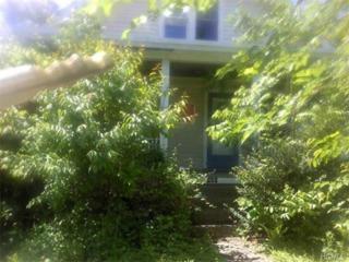 203  Depew Avenue  , Nyack, NY 10960 (MLS #4523554) :: William Raveis Baer & McIntosh