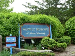 8  Laudaten Way  , Warwick, NY 10990 (MLS #4523628) :: Carrington Real Estate Services