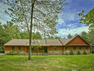 41 S Maplewood Road  , Monticello, NY 12701 (MLS #4524148) :: Carrington Real Estate Services