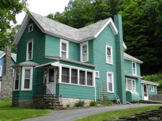 1992  Old Route 17  , Roscoe, NY 12776 (MLS #4524190) :: Carrington Real Estate Services