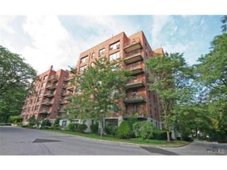 119 S Highland Avenue  1G, Ossining, NY 10562 (MLS #4424117) :: Mark Seiden Real Estate Team