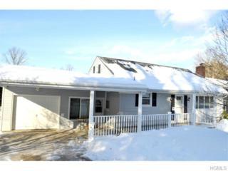 1400  The Circle  , Peekskill, NY 10566 (MLS #4504510) :: The Lou Cardillo Home Selling Team